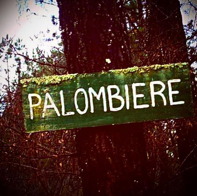 Palombiere