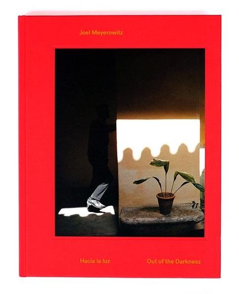 Joel Meyerowitz Hacia La Luz Out Of The Darkness 01