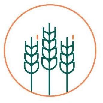 Logo Du Comptoir D'Anselme