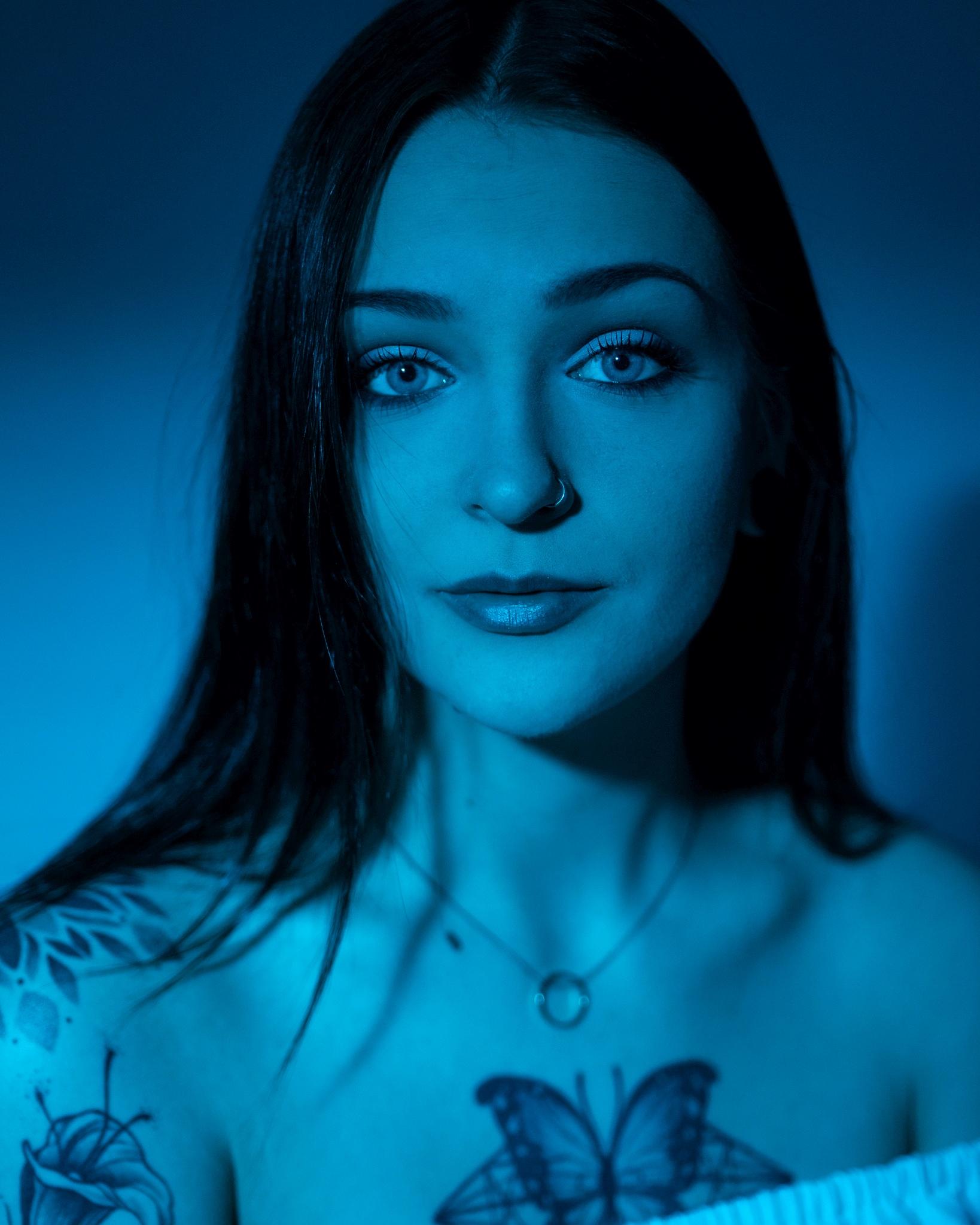 Blue Jay © Benji Schauss