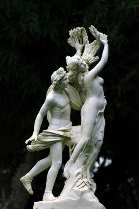 Daphné et Apollon – le Bernin