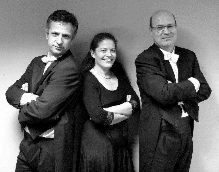 Le trio à cordes du 17 novembre. De gauche à droite : Daniel Rossignol, violon,  Sarah Iancu, violoncelle, Bruno Dubarry, alto