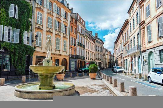 Toulouse, ville Rose, ville fleurie